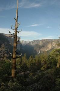 Inspiration Point Trail-Yosemite